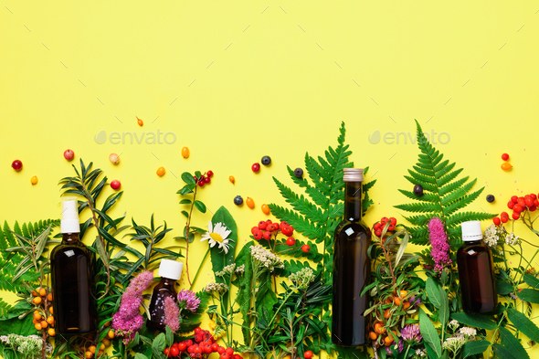 Essential oils in dark glass bottles and healing flowers, herbs on yellow background. Holistic - Stock Photo - Images