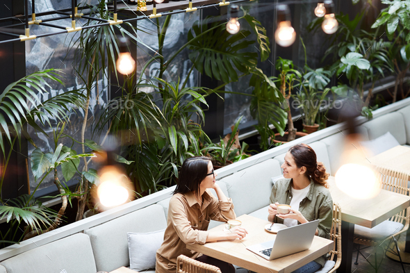 Lady entrepreneurs discussing strategy in cafe - Stock Photo - Images