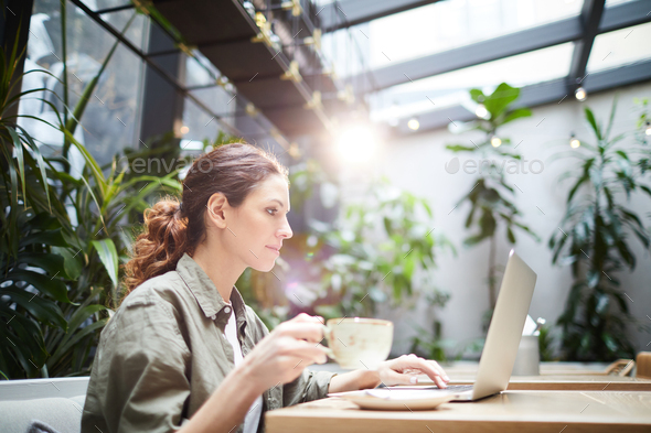Concentrated freelancer working on online project - Stock Photo - Images