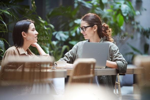 Confident ladies working on web design - Stock Photo - Images