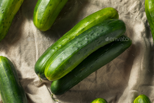 Raw Green Organic Cucumbers - Stock Photo - Images