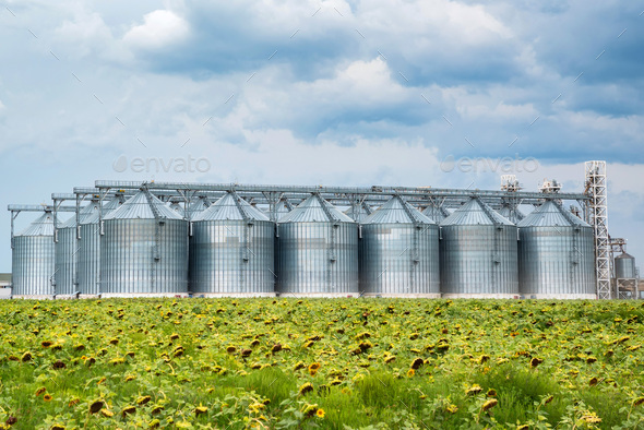 Distant view of sunflower oil refinery in a field - Stock Photo - Images