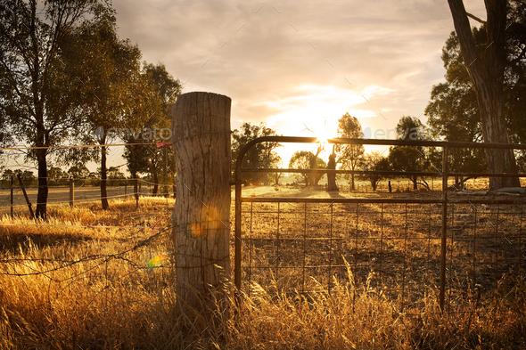 Sunset on Farm - Stock Photo - Images