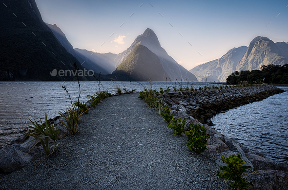 Sun rays on Milford Sound - Stock Photo - Images