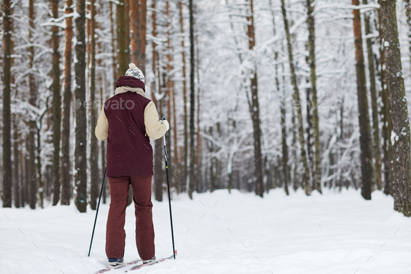 Man Skiing in Forest Back View - Stock Photo - Images
