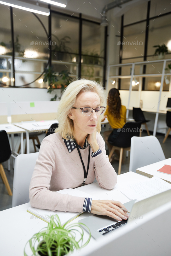 Concentrated lady manager using laptop - Stock Photo - Images