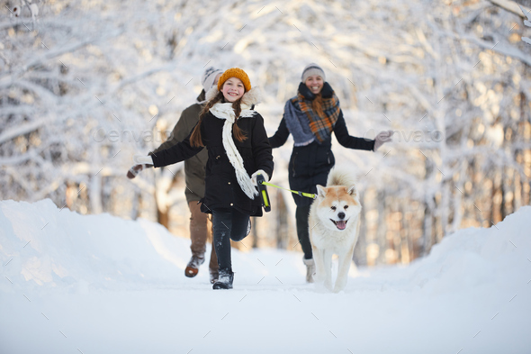 Girl Walking Dog in Park - Stock Photo - Images