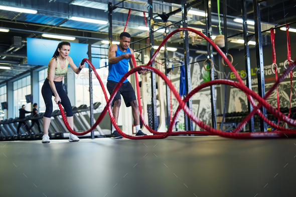Training with ropes - Stock Photo - Images