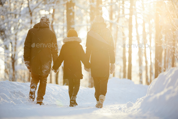 Family Enjoying Walk in Winter Forest - Stock Photo - Images