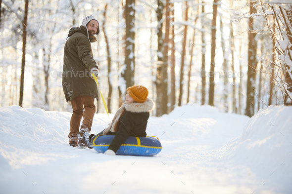 Sleigh Ride in Forest - Stock Photo - Images