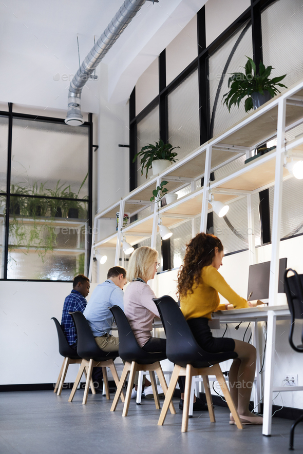 Creative colleagues working in modern office - Stock Photo - Images