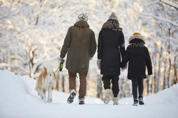 Family Walking with Dog in Park - Stock Photo - Images