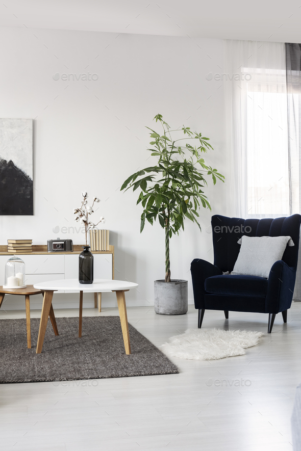 Black and white abstract painting on empty wall of cozy living room interior - Stock Photo - Images