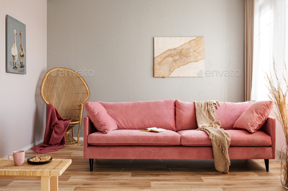Wicker peacock chair with red blanket behind pink velvet couch - Stock Photo - Images