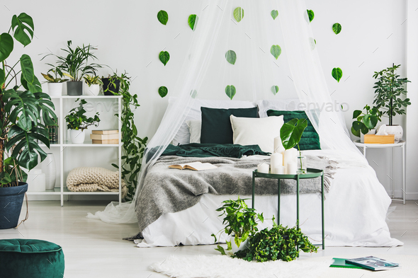 Urban jungle in white bedroom interior with green leafs on empty wall - Stock Photo - Images
