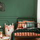 Copy space on empty dark green wall of trendy bedroom interior - PhotoDune Item for Sale