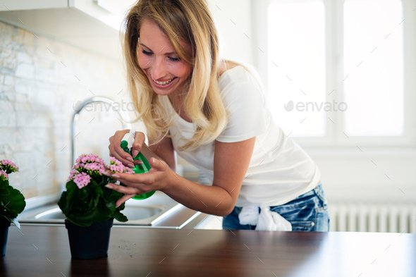 lovely housewife with flower in pot - Stock Photo - Images