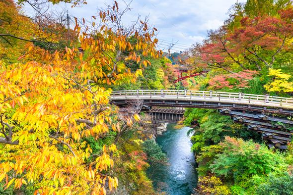 Otsuki, Japan at Saruhashi Monkey Bridge - Stock Photo - Images