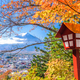 Mt. Fuji, Japan with Fall Foliage - PhotoDune Item for Sale