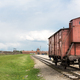 Railway wagon for prisoners, Auschwitz II, Poland - PhotoDune Item for Sale