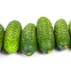 Fresh cucumbers laying in a row - PhotoDune Item for Sale