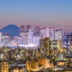 Tokyo Skyline and Fuji Mountain - PhotoDune Item for Sale
