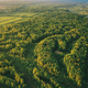 Aerial View Green Forest Woods Landscape In Sunny Spring Evening - PhotoDune Item for Sale
