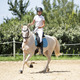 riding girl and horse - PhotoDune Item for Sale