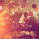 Brush Particle  Wedding Slideshow - VideoHive Item for Sale