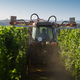 tractor trimming the vineyard in the morning - PhotoDune Item for Sale