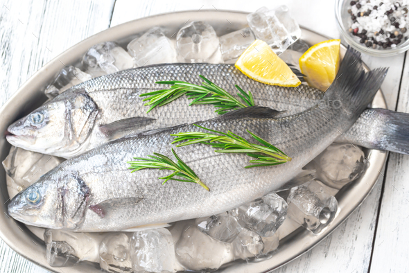 Fresh sea bass fish - Stock Photo - Images
