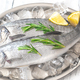 Fresh sea bass fish - PhotoDune Item for Sale