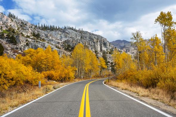 Autumn road - Stock Photo - Images