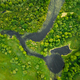 Aerial View. Green Forest, Meadow And River Marsh Landscape In S - PhotoDune Item for Sale