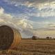 Bales of hay - PhotoDune Item for Sale
