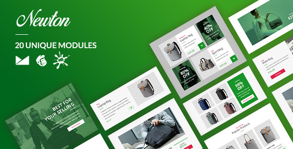 Newton Email-Template + Online Builder