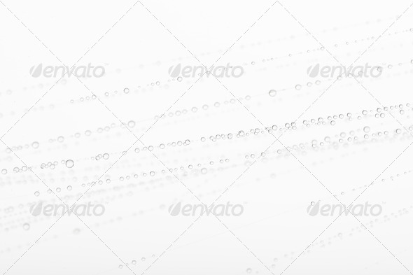 Water on spider web against white background, studio shot - Stock Photo - Images