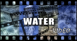 Water (Video)