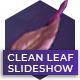 Clean Leaf Slideshow - VideoHive Item for Sale
