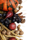 Autumn fruits and vegetables - PhotoDune Item for Sale