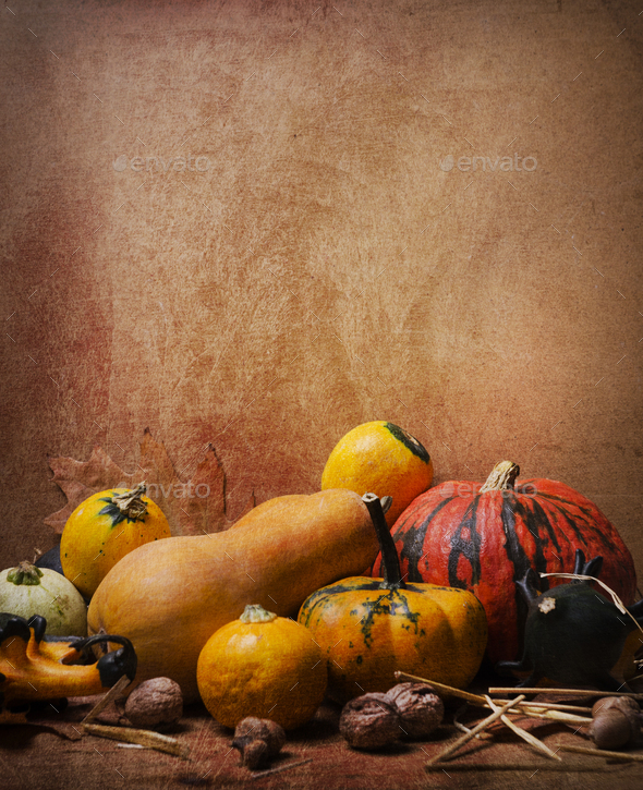 Thanksgiving still life - Stock Photo - Images