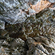 Deep Canyon - VideoHive Item for Sale