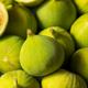 Raw Green Organic Figs - PhotoDune Item for Sale