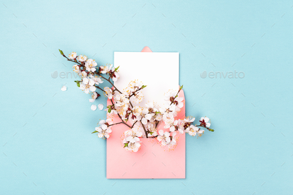 Pink Envelope With Branches Of Spring Flower And Empty Card On Blue Background