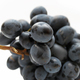 Cluster of grapes - PhotoDune Item for Sale
