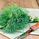 Dill with a knife and a napkin on a blackboard - PhotoDune Item for Sale