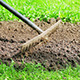 Cultivating Flower Bed With A Rake - VideoHive Item for Sale