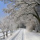 Snow-covered road in the countryside - PhotoDune Item for Sale