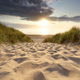sand path to North sea beach at sunset sunshine - PhotoDune Item for Sale