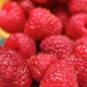 Fresh healthy raspberries as delicious dessert containing minerals - PhotoDune Item for Sale